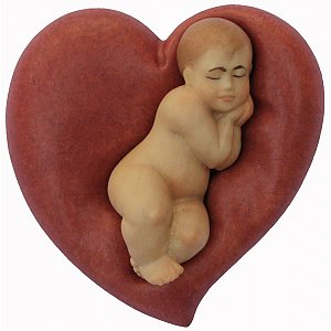 6073 - Newborn on heart