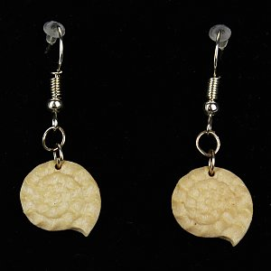 3814 - Earrings fossil hanging